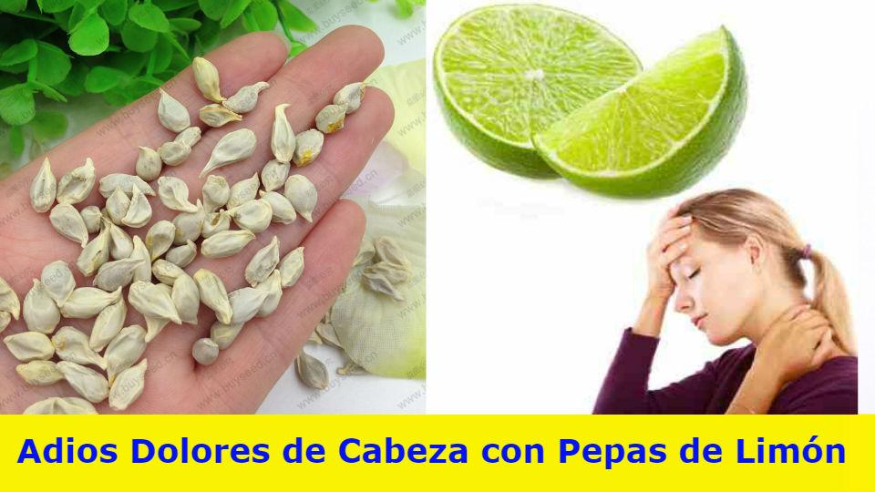 Adiós dolores de cabeza con semillas de limónEl dolor de cabeza suele ser causado por cambios hormonales, falta de alimentación, B12, exceso de medicamentos